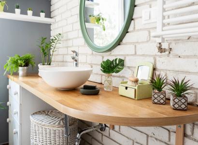 Jakie kwiaty wybrać do łazienki? 5 pomysłów!